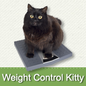 Weight Control Kitty